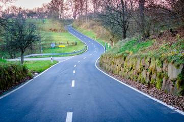 Kurvige Landstraße