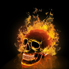 Skull on black background. High resolution 3d render.