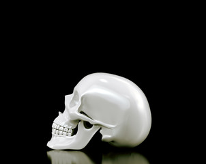 Skull on black background. High resolution 3d render.