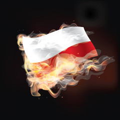 poland flag burning