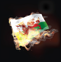 wales flag burning