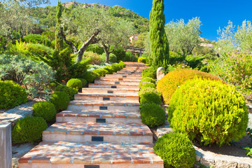 escalier jardin provençal