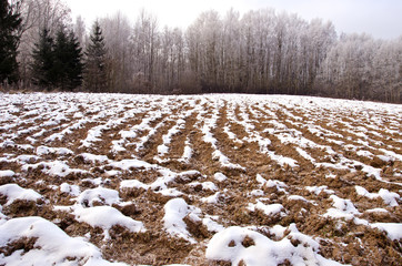 plowed winter farmland field covered snow