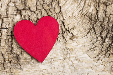 Red heart on bark background. Symbol of love