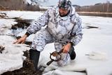 hunter setting a leghold trap for beaver