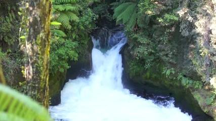 Tutea Falls. Kaituna River. New Zealand