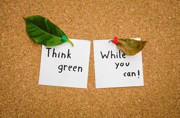 Think green while you can suggesting the ecologist
