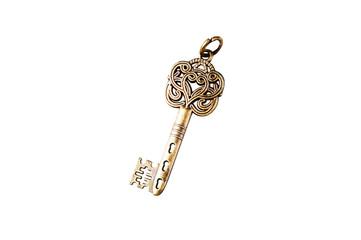 Vintage golden key