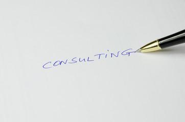 Schriftzug Consulting