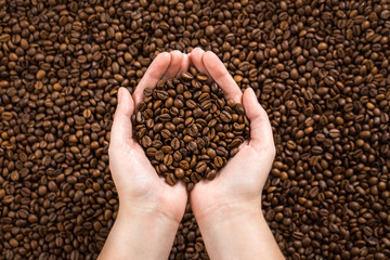 Coffee beans in woman's hands.