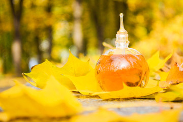 Bottle of perfume on the autumn leaves