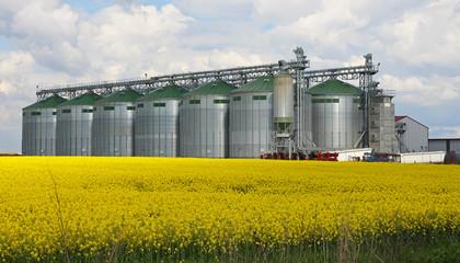 Canola oil silo
