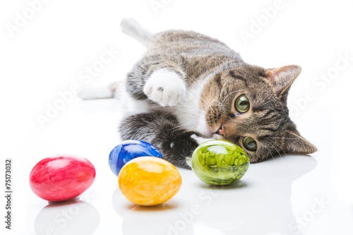 Fotobehang Tijger katze spielt mit ostereiern