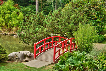 France, the picturesque japanese garden of  Aincourt