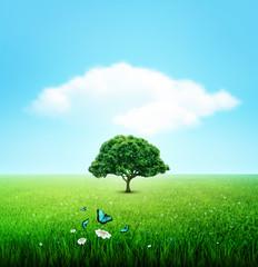 Summer, Field, Sky, Tree, Grass, Flower And Butterflies