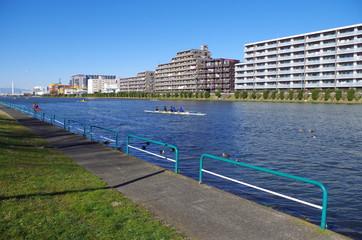 漕艇場の池
