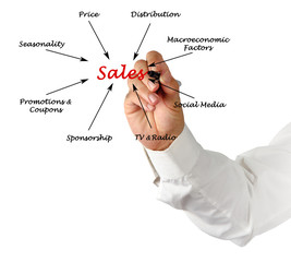 What influence sales