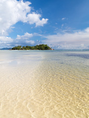 island with coconut palms