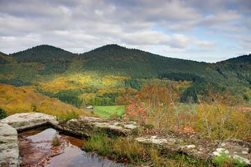 paysage d'alsace du nord