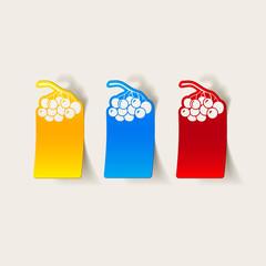 realistic design element: berries