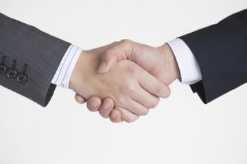 握手する2人のビジネスマンの手