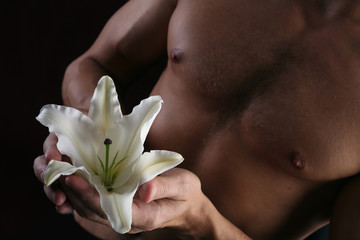 white lily in the hands