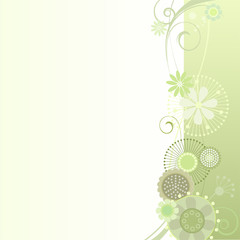 Floral background in light green
