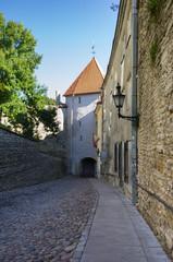 Tower of old Tallinn