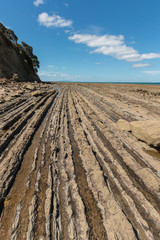 exposed volcanic layers at  New Zealand coast