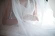 bride under veil - 75225427