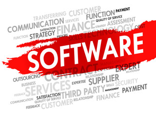Software related items word cloud, vector business concept
