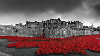 Tower of London at Centenary of World War One
