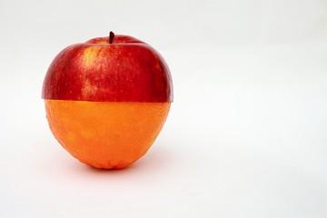apple and orange - collage