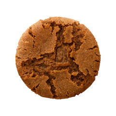 Ginger Snap Cookie