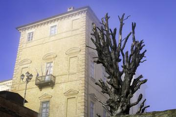 The Govone Castle - Cuneo. Color image