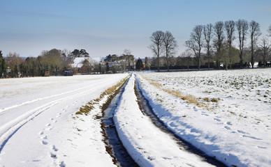 English Winter Rural Landscape