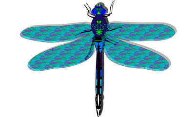 Dgragonfly blue