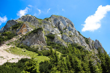 Mountain panorama with big stones and path near pine forest