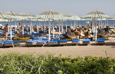 Beach in Sharm el-Sheikh. Egypt