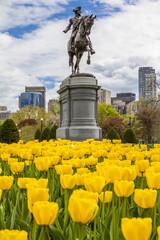 Boston Public Garden in Massachusetts, USA
