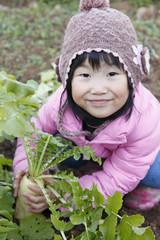大根 収穫 女の子