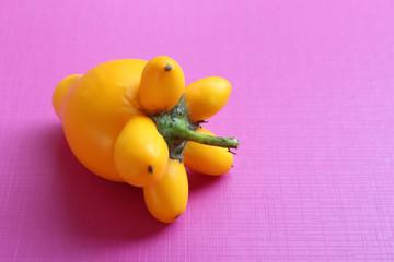 Titty Fruit
