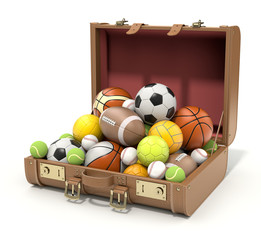 Sport balls in the case