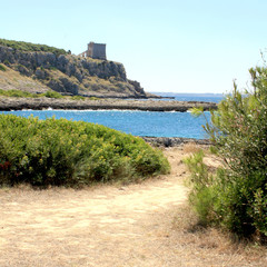Torre dell'Alto (Nardò, Salento, Puglia, Italia)
