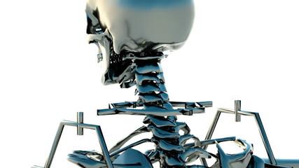 Revolving human skeleton