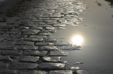 cobblestone street and puddle