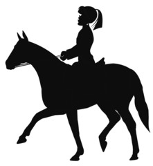 horse and rider in silhouette