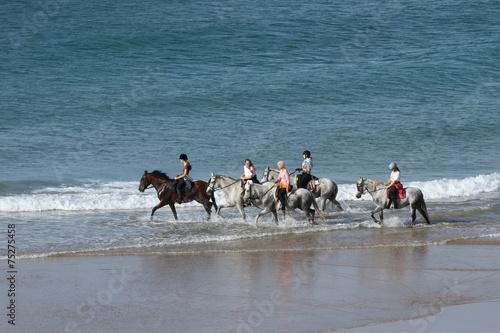 Am Strand reiten - 75275458