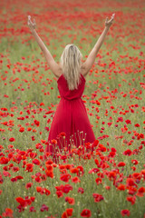 Beautiful blonde woman with red dress, in a poppy field