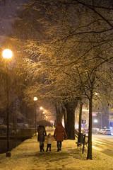 Serata con la neve
